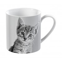 Mug Creative Tops Pet Corner Gatito 300ml