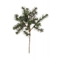 Rama Navidad abeto 60cm