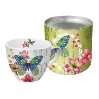 Mug grande en caja regalo mariposa Aporia PPD 45cl