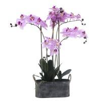 Orquídea fucsia con hojas artificiales Phalaenopsis maceta metálica 70h cm