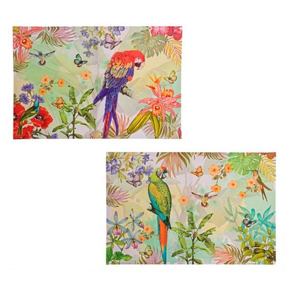Cuadro lienzo Loro Papagayo tropical 2 modelos 40x60 cm
