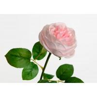 Rose pretty 2 pink tones 41 cm