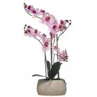 Orquídea morada con hojas artificiales Phalaenopsis maceta cerámica rectangular 55h cm
