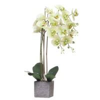 Orquídea verde con hojas artificiales Phalaenopsis maceta cerámica ladrillos 63h cm