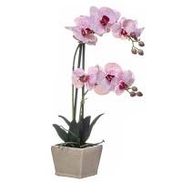 Orquídea morada con hojas artificiales Phalaenopsis maceta cerámica beige 55h cm