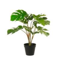 Planta artificial en maceta Monstera Costilla de Adán 60x60cm